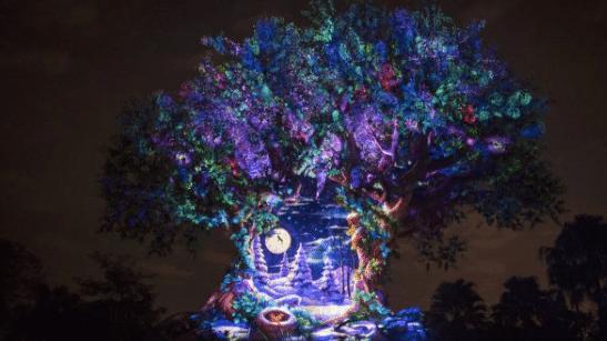 8 Favorite Holiday Experiences at Disney's Animal Kingdom