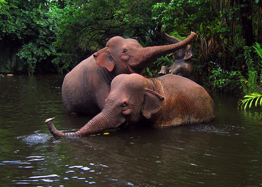 Jungle Cruise Elephant