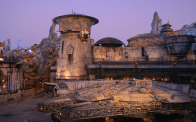 5 More of Our Favorite Walt Disney World Expeditions